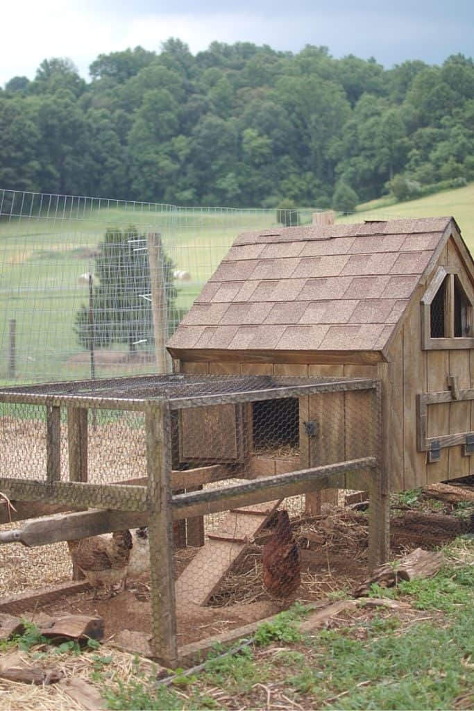 How to Build a Chicken Run