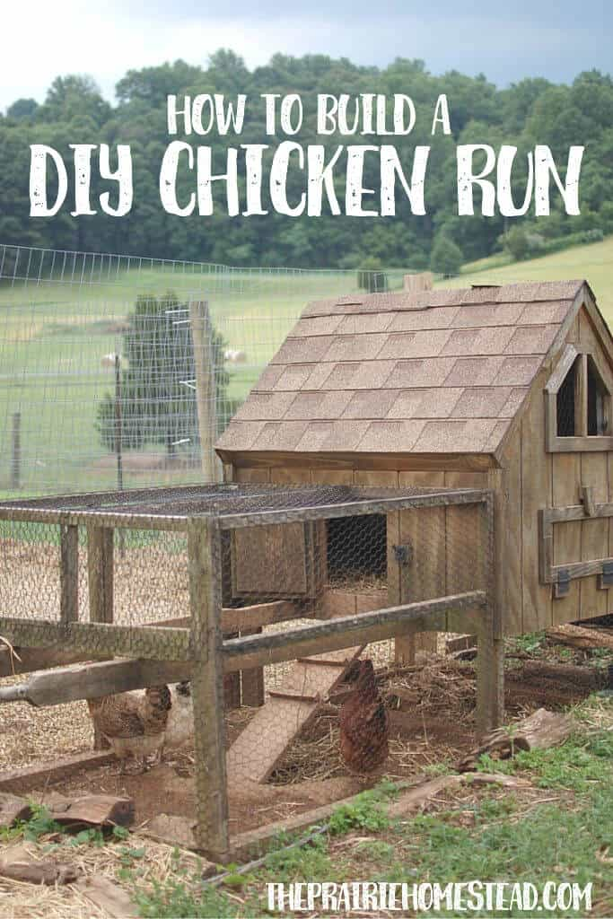 instructions for a diy chicken run